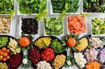 diéta típusok